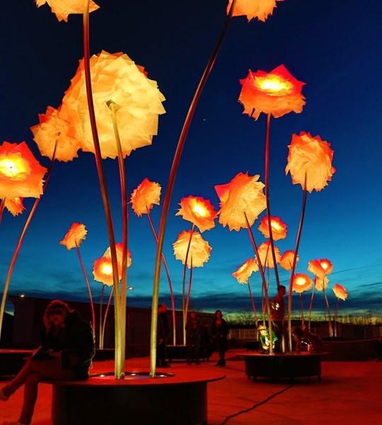 festival lumières sharjah.jpg